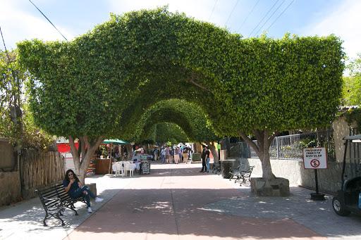 Loreto main walkway.jpg - The entrance to the main public walkway in Loreto.