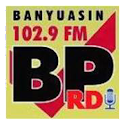 BP RDI Banyuasin icon