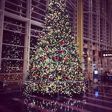 Photo: A little Christmas cheer at the airport.