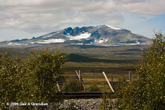 Photo: Snøhetta, 2286 m amsl, with the Dovre line in foreground