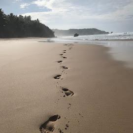 Footsteps by Mylene Rizzo - Instagram & Mobile iPhone ( sumba, sand, beach, footsteps, sea )