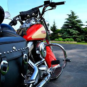 by Katie Schmitt - Transportation Motorcycles ( truck, sports car, racecar, hot rod )