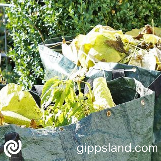 Take advantage of the service offered by the council on green waste disposal, check what you need to know before going to your transfer stations