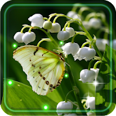 Lily of valley HD LWP