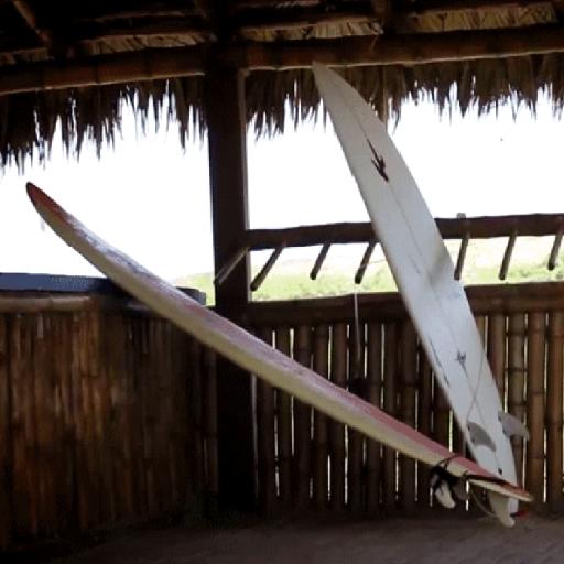 Surf Surfboard Live Wallpaper