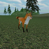 Real  Fox Survival Simulator