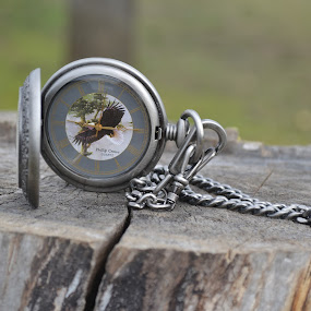 Pocket watch by Larry Peeler - Products & Objects Technology Objects ( detail, technology, watch, artistic, object )