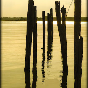 Lake Worth by Jen Hamrick - Landscapes Waterscapes