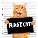 Funny Animals Videos icon