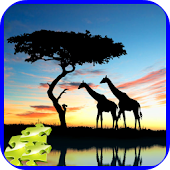 Wild Nature Jigsaw Puzzles