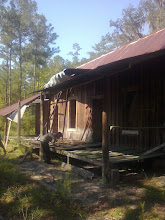 """Photo: """"Langston House"""" is a historic structure in the Apalachicola National Forest.  It is  currently having some preservation work done.  US Forest Service cultural resource staff inspect and document the contract work."""