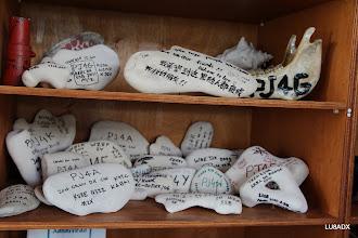 Photo: Piedras con cada operación que hubo desde PJ4G