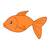Destiny Fish