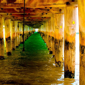 Pier Through. by Alicia Lockwood - Landscapes Beaches ( water, wood, green, beach )