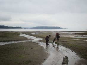 Photo: Kathryn True and Orion Knowler catching sculpins. Photo by: Bianca Perla