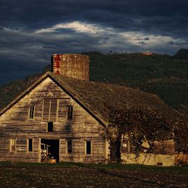Abandoned  by Todd Reynolds - Buildings & Architecture Decaying & Abandoned