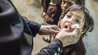 The End of Polio/Collateral Damage