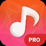 music1.pro.mp3