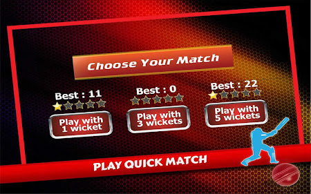 T20 Cricket 2016 2.5 screenshot 404120