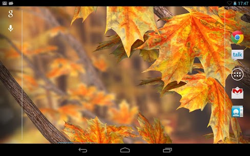 Autumn Tree Free Wallpaper Apk  Download For Android 3