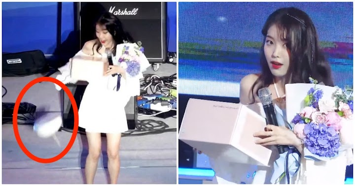 IU's Reaction To Dropping Her Birthday Cake On Stage Was