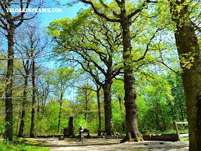 Photo: Chêne des Missions, le plus vieux chêne de la Forêt de Meudon - e-guide balade à vélo de Meudon au Château de Versailles par veloiledefrance.com