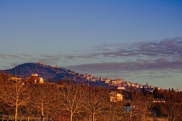 skyline cortona AR di thomas_gutschi