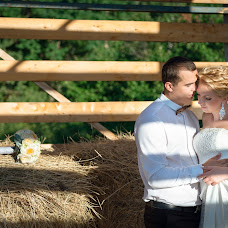 Wedding photographer Denis Mirskoy (pavelvasin). Photo of 31.12.2015