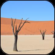 خلفيات الصحراء APK