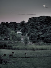 Photo: Moonrise over pasture Along the aqueduct, Northborough, MA  #365project curated by +Susan Porter+Simon Kitcher+Patricia dos Santos Patonand +Vesna Krnjic  #lansdscapephotography curated by +Margaret Tompkins+Carra Riley+paul t beardand +Ke Zeng
