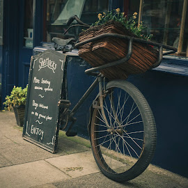 Flat by Darrell Evans - Transportation Bicycles ( basket, door, wheels, flowers, bicycle, old, sign, walkway, advertising, transport, cycle, building, tyre, bike, outdoor, path, blue, window )