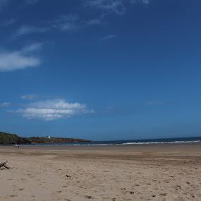 St Cyrus, Montrose  by Louise Corr - Landscapes Beaches ( beach scotland branch sea sun )