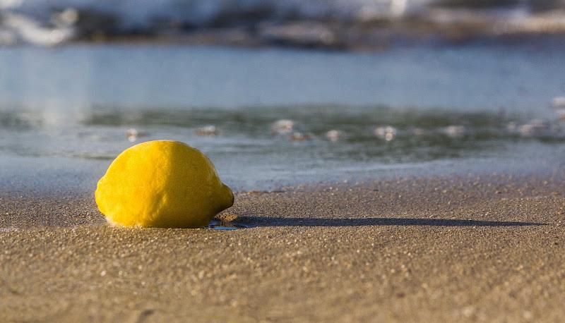 Limone sulla battigia di zucco