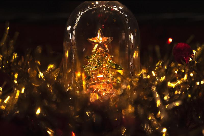 Sparkling Xmas di serena_pacenza