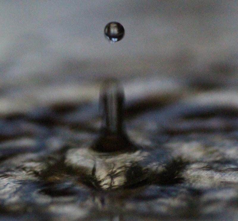 water di Loris Moratti