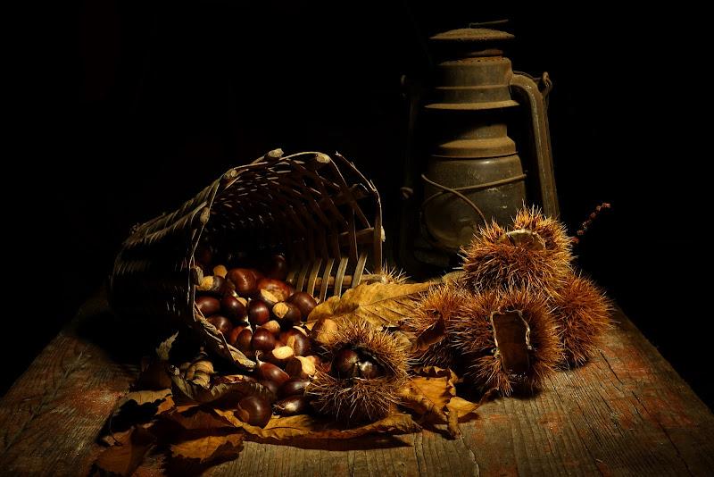I frutti dell'autunno di Stefano Ferrari