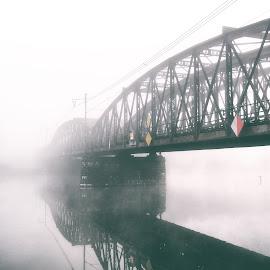 Railway bridge by Michal Fokt - Buildings & Architecture Bridges & Suspended Structures ( bridge, fog )