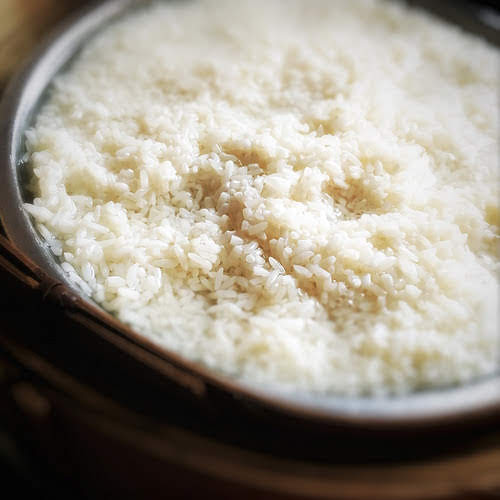 Homemade, Chinese, Fermented Rice, jiuniang, jiu niang, 自製, 甜酒釀, shanghai wine yeast ball, rice wine starter, 酒麴, 上海酒餅丸, glutinous rice, sticky rice,