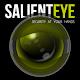 Salient Eye, Home Security Camera & Burglar Alarm apk