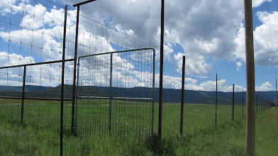 Photo: Old elk pens (from previous owners) make for an impenetrable across-the-fence weaning trap. Sub-irrigated bottoms gives weaner calves plenty of high quality feed.