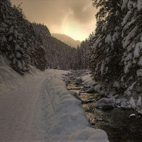 Winter wonderland by Wojciech Toman - Landscapes Mountains & Hills