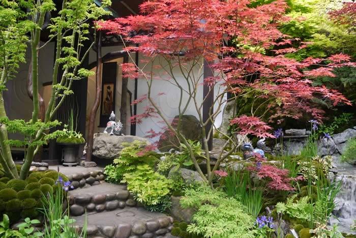 Inspirasi desain taman bertema Zen Garden - source: paramountplants.co.uk