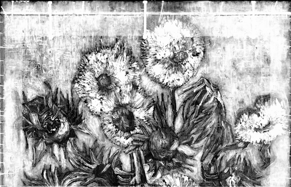 Everything about Sunflowers - Van Gogh Museum