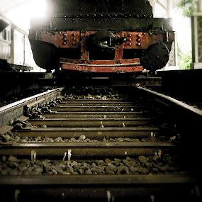 by Irvan Junizar - Transportation Trains