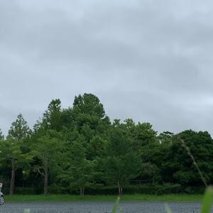 コペン  2003年式 アクティブトップのカスタム事例画像 silvercopenさんの2020年07月06日21:27の投稿