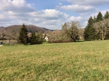 terrain à Saint-Jean-de-Côle (24)