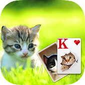 Solitaire Little Cat Theme