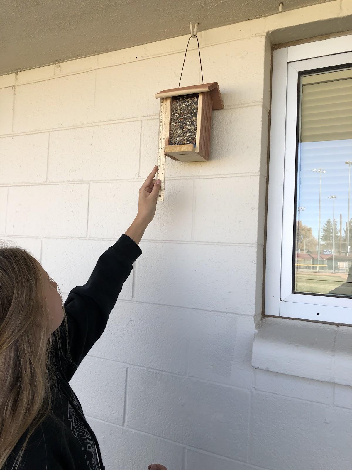 SWOPE Students Work With Bird Feeders