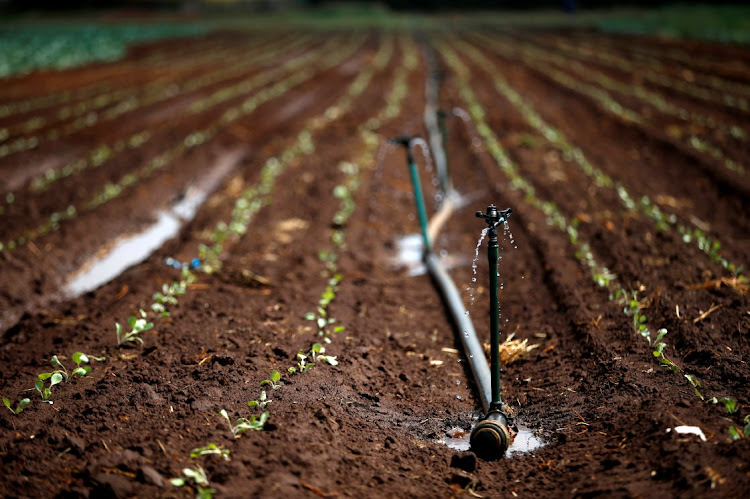 Irrigation system is seen at a farm in Eikenhof, South of Johannesburg. REUTERS/Siphiwe Sibeko