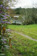 Photo: Vista da igrexa de Rois (2012)